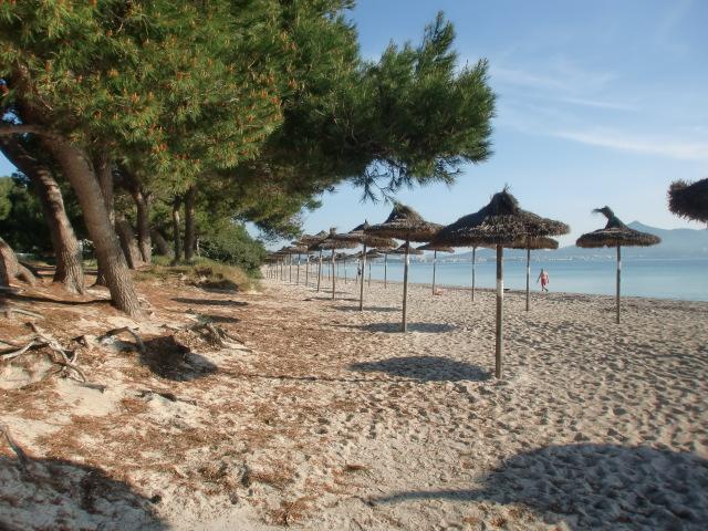 Can Picafort / Playa Muro -