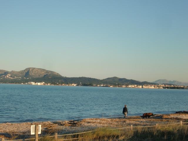 Pollenca -  Port de Pollenca - Cala Sant Vicenc - Viele Fincas mit Pool liegen nur wenige Meter vom Strand entfernt.