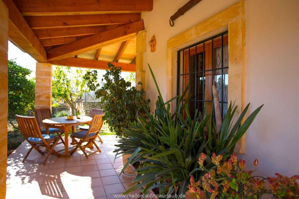 Foto der Wohnung MAL-24-038-01-finnca-julia-colonia-st-pere.terrasse1.jpg
