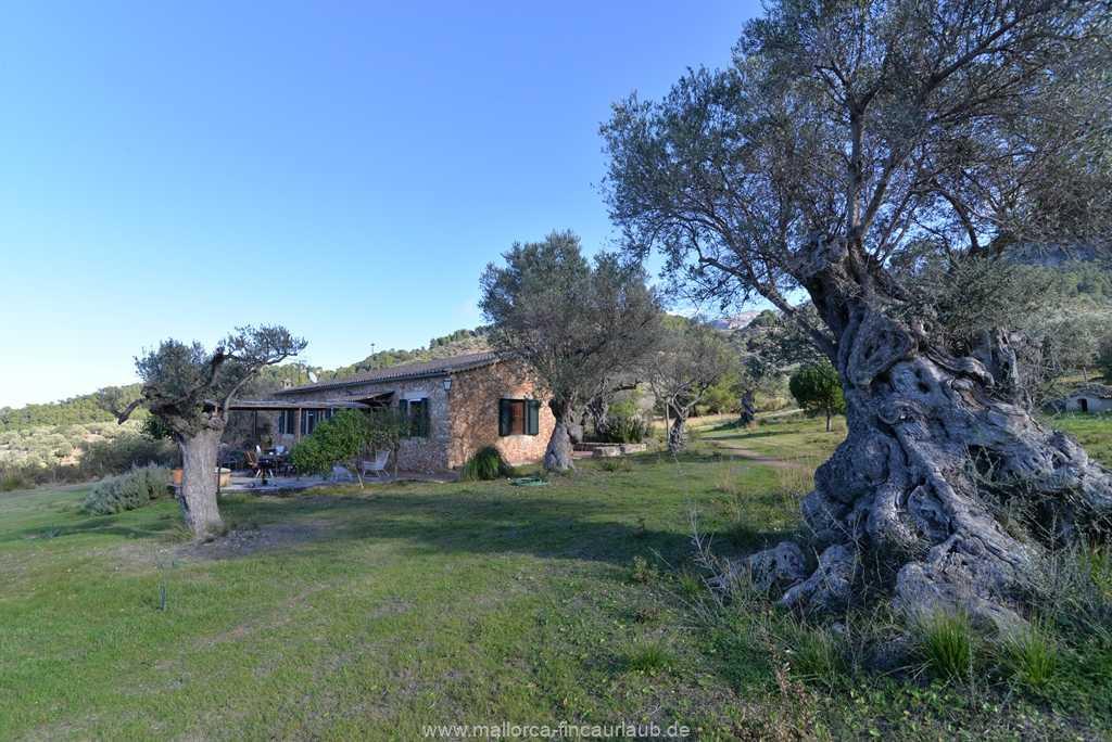 Foto der Wohnung MAL-40-511-01-finca-vidal-deia-valldemossa-ansicht1.JPG