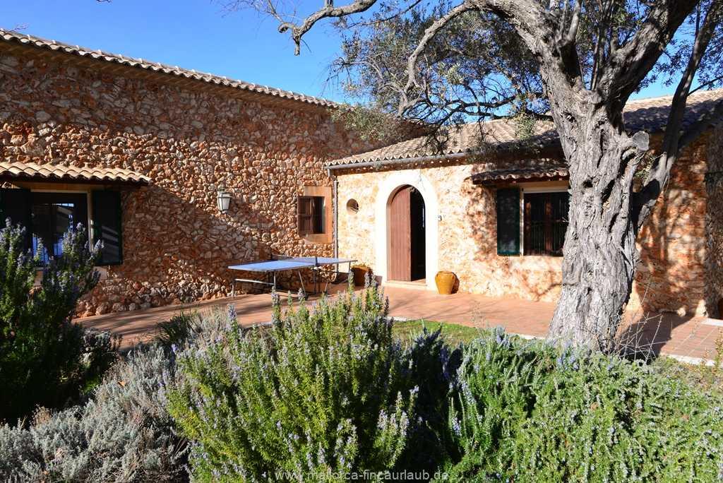 Foto der Wohnung MAL-40-511-01-finca-vidal-deia-valldemossa-tschtennis.JPG